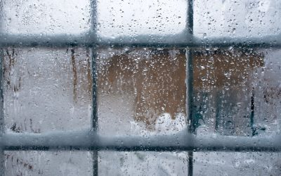 Winterize Your Houston Home With Thermal Window Film